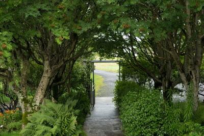 地域連携プログラム 「 夢にみる空家の庭の秘密」【今週のおすすめアート】