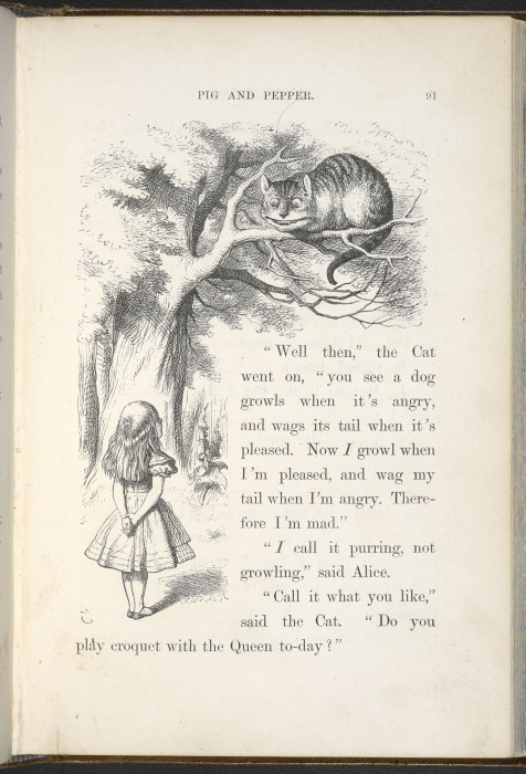 john-tenniel-illustration-alice-cheshire-cat-alice-adventures-in-wonderland-by-lewis-carroll