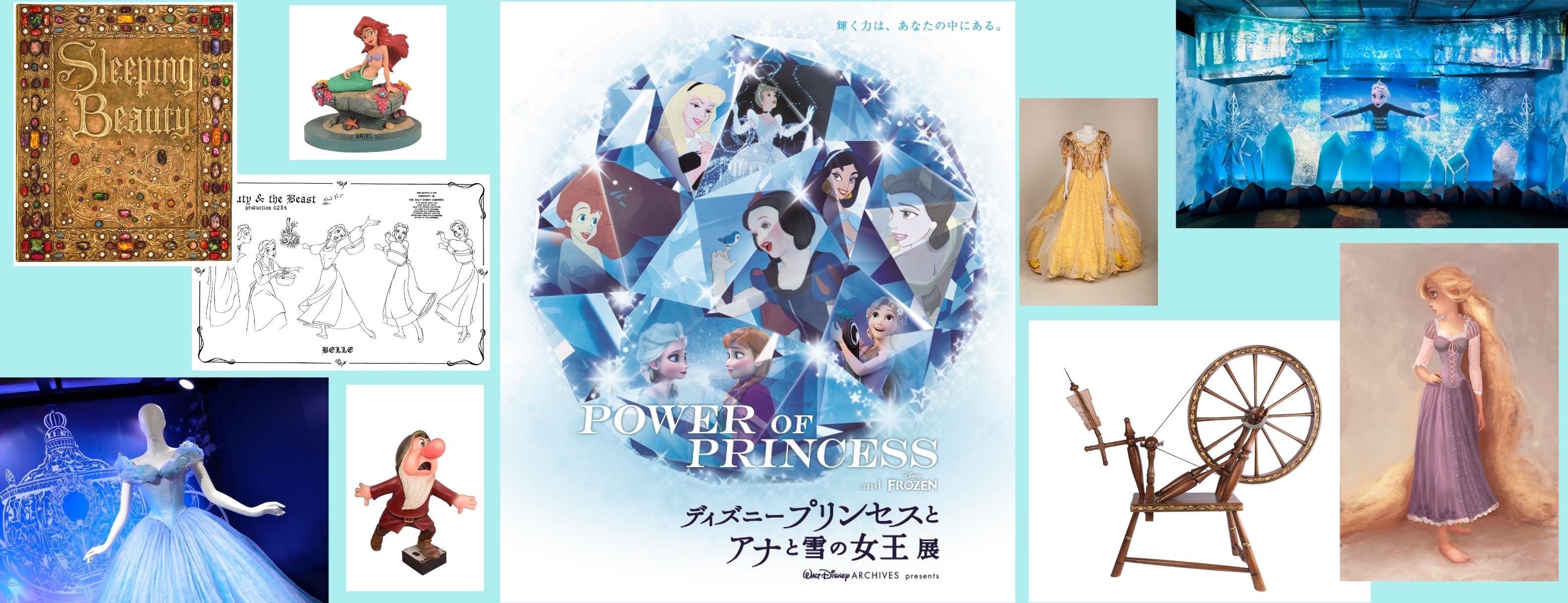 あなたはどのプリンセスが好き?『POWER OF PRINCESS ディズニープリンセスとアナと雪の