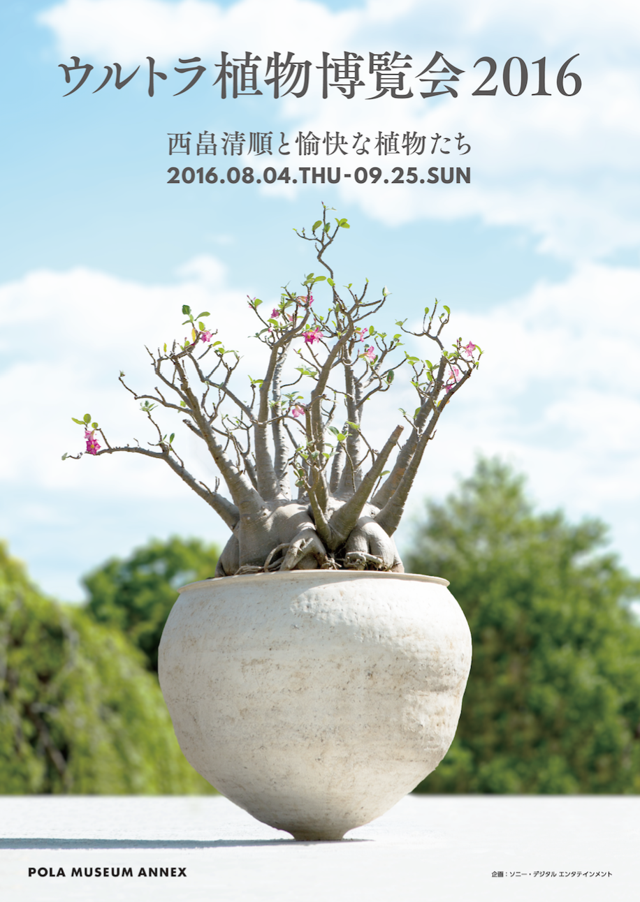 好評についき!!「ウルトラ植物博覧会2016」西畠清順と 愉快な植物たち 【先取りおすすめアート】