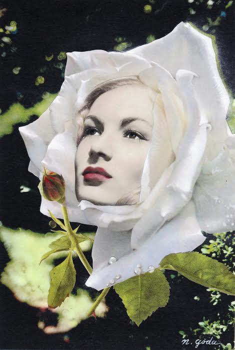 繊細さと逞しさの狭間「夢の植物園」展【今週のおすすめアート】