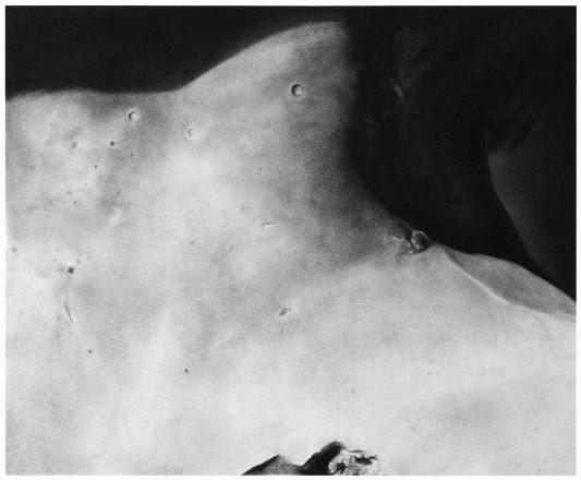 """ロマーン・カディロンの日本初個展となる 「光と影」""""Dawn Chorus"""""""
