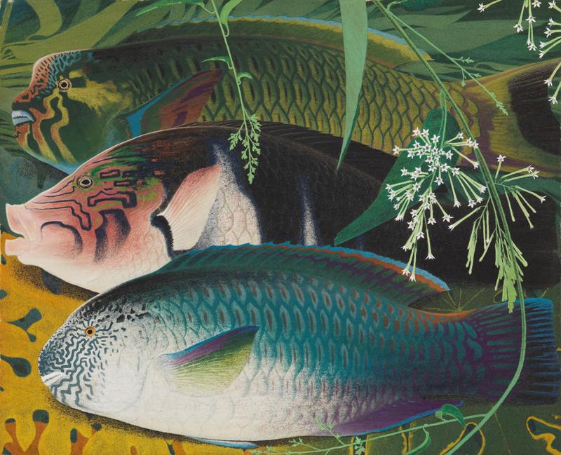 初公開 田中一村の絵画 ―奄美を愛した孤高の画家― 【箱根・岡田美術館】