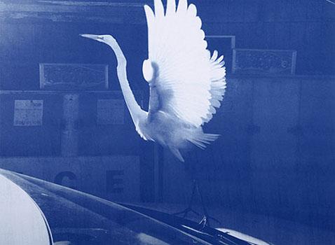 【今週のおすすめアート】ティム・バーバー「Blues」