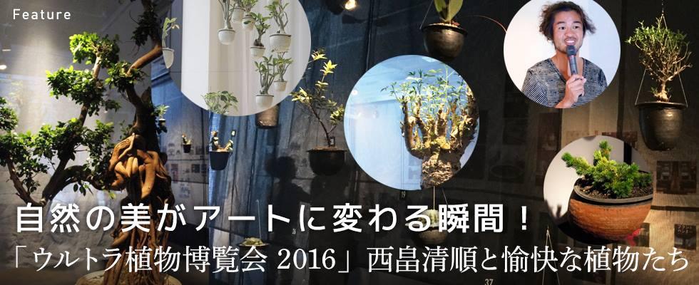 自然の美がアートに変わる瞬間! 「ウルトラ植物博覧会 2016」西畠清順と愉快な植物たち