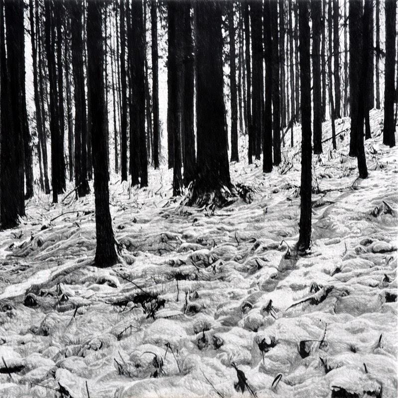 やさしい眼差しで山をみるー本田健「ゆきつき」【今週のおすすめアート】