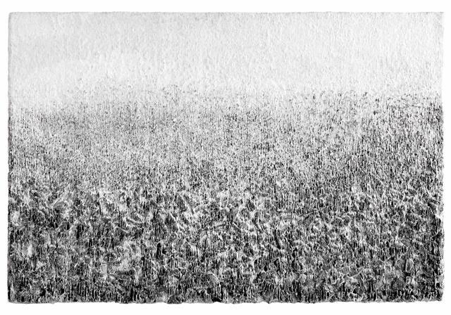 韓紙と炭で描く世界 李鎮雨「森の奥で」  【今週のおすすめアート】
