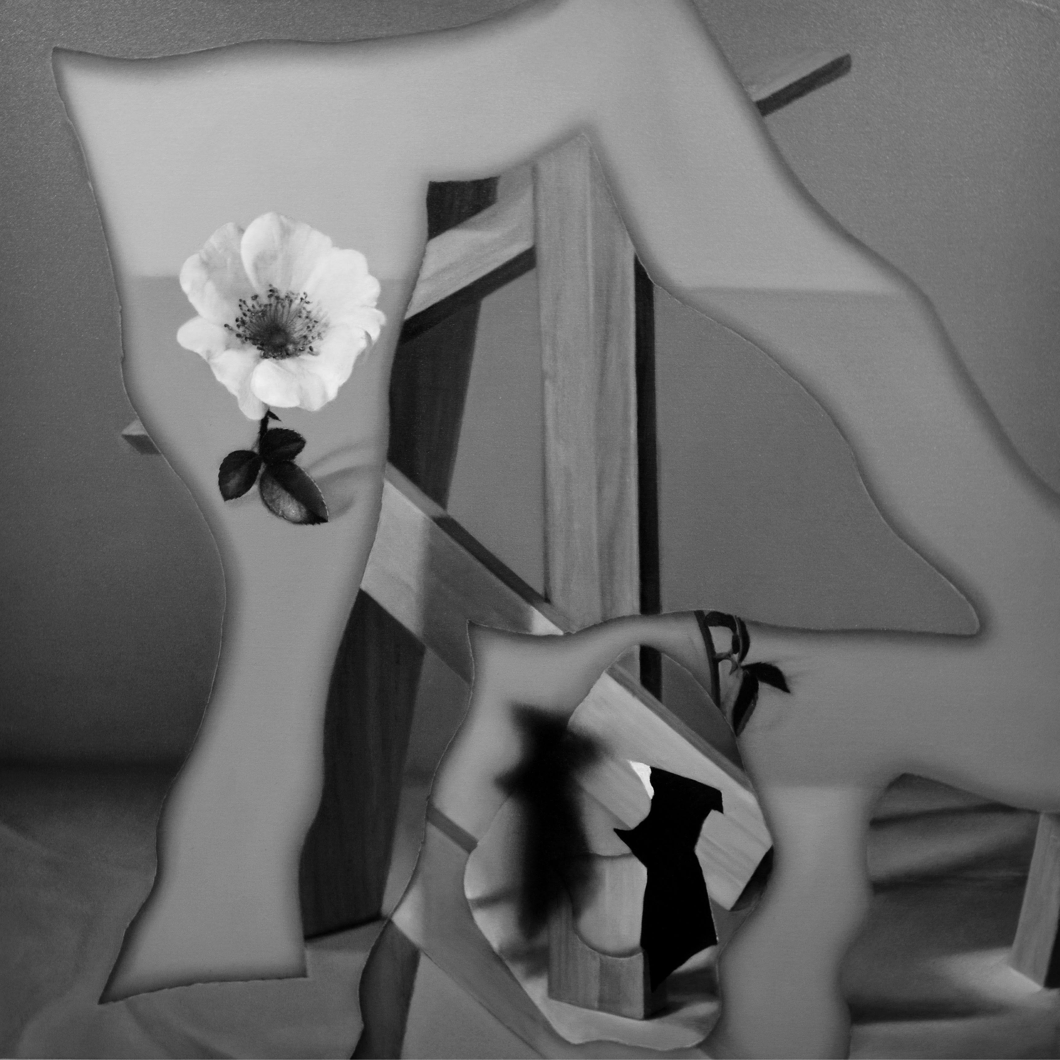 ~飽くなきリアリズムへの追求~薄久保香 | 新作個展【今週のおすすめアート】