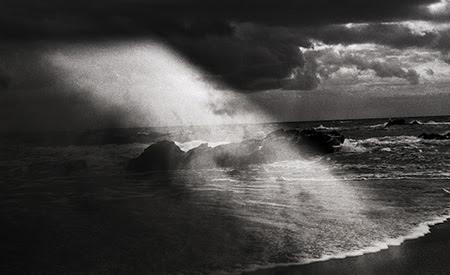 ~再生される砂上の記憶~吉田志穂 個展「砂の下の鯨」【今週のおすすめアート】