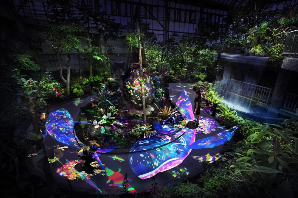 夜の植物館にデジタルの生き物が出現 「チームラボ 宇部市ときわ公園 2017 – 世界を旅する植物に